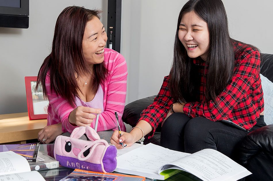 Two students study together